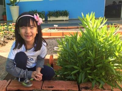 Crianças cultivam horta na unidade I