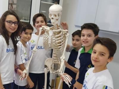 Sistema esquelético é tema de aula no laboratório